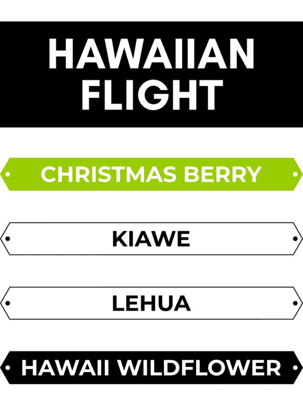worker-b-raw-honey-flight-box-hawaiian