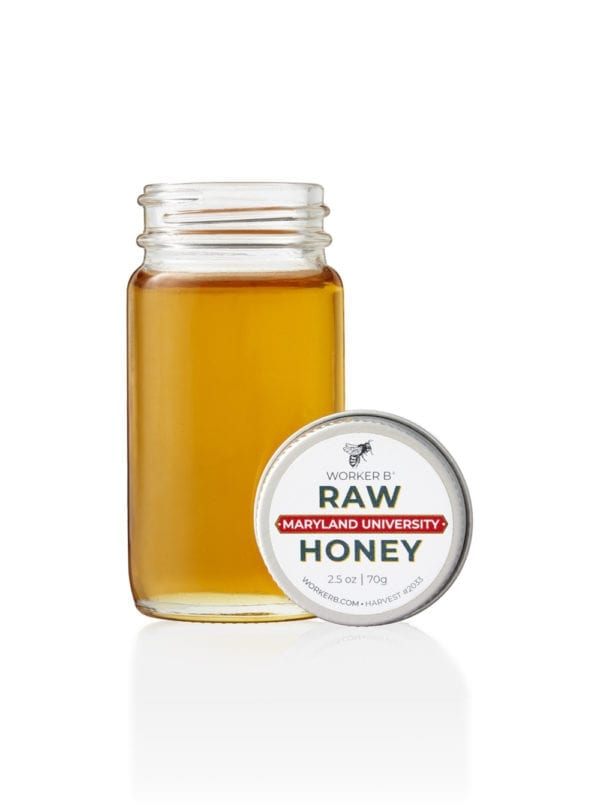 worker-b-raw-honey-mini-maryland-university